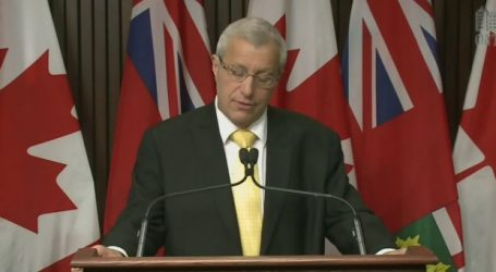 Interim PC party leader Fedeli says he won't run for leadership