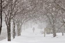 Photo of GTA e sul do Ontário sob declaração meteorológica especial devido a previsão de primeira queda significativa de neve