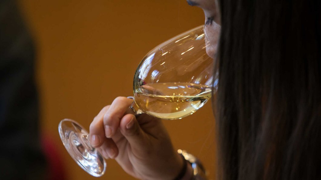Photo of Vinhos da Madeira premiados