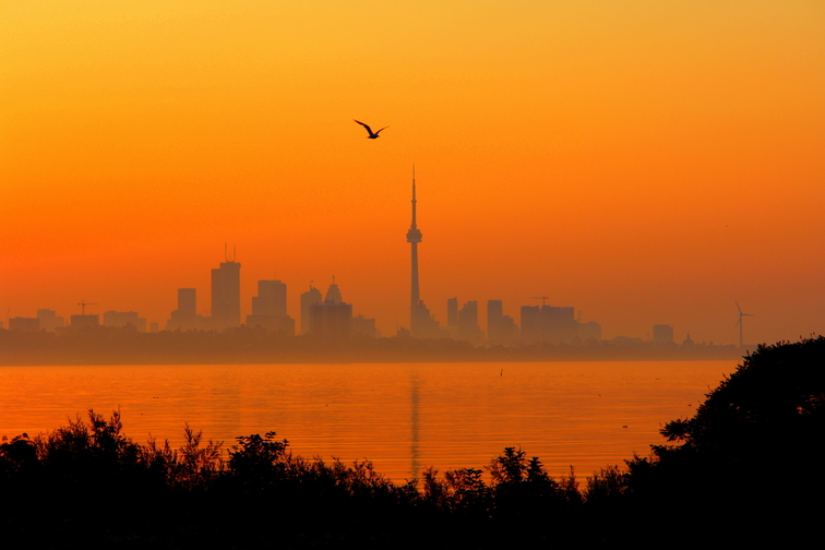 Photo of Heat warning issued for the GTA for Friday and Saturday