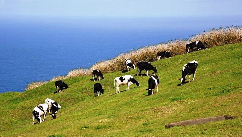 "Photo of Agricultura: ""estamos presos por arames"""