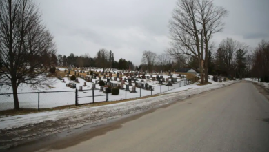 Photo of Developer's bid to rename Cemetery Road in Uxbridge might hit dead end, councillor says
