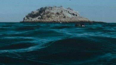 Photo of Frente Mar Funchal leva educação ambiental ao MadeiraShopping
