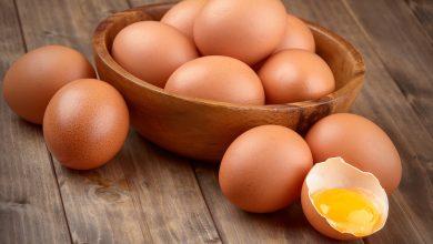 Photo of Consumo de frango e ovos aumentou