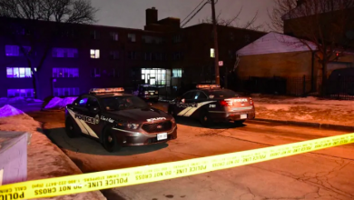 Photo of Man dead following shooting at North York apartment building