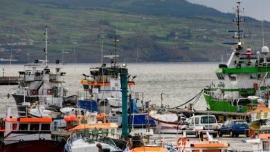 Photo of Pescadores reclamam linha de crédito