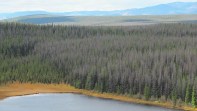 Photo of Proposed $1.8B mining project for Northern B.C. gets environmental approval