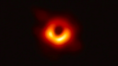 Photo of Ontario researcher among global team unveiling first image of a black hole