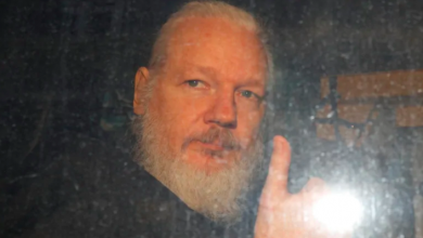 Photo of 9 Canadian stories WikiLeaks helped bring to light