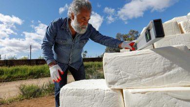 Photo of Nove mil blocos de queijo na fronteira entre os EUA e o México