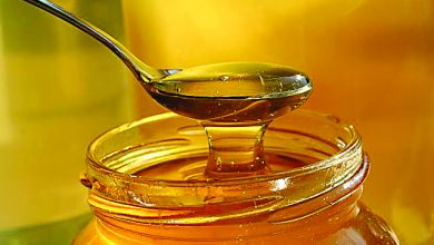 Photo of Produção de mel nos Açores gera receita anual de um milhão de euros