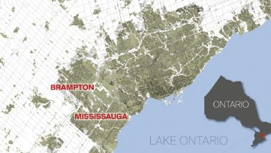 Photo of Who will scoop up: Mississauga or Brampton?