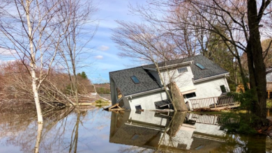 Photo of Major recovery effort looms as Muskoka water levels begin slow drop