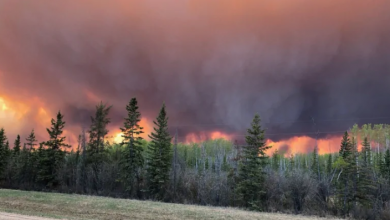 Photo of Evacuation ordered for High Level, Alta. as wildfire approaches