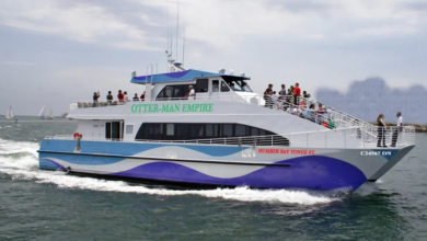 Photo of $10 'premium' catamaran ride proposed from Humber Bay Shores to downtown Toronto