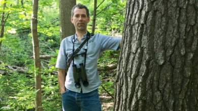 Photo of Man campaigns to save native species in Toronto's ravines