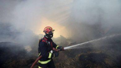 Photo of Santa Cruz apresenta risco máximo de incêndio