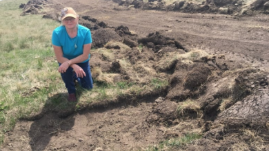 Photo of Saskatchewan First Nations want road project stopped after rare artifact discovery