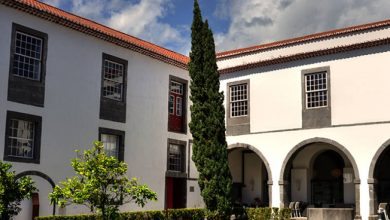 Photo of Mais de 87% das vagas ocupadas na Universidade da Madeira
