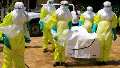 Photo of UA envia missão para combater Ébola na RDC