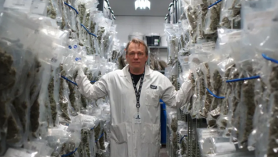 Photo of Bruce Linton out as co-CEO of Canopy Growth