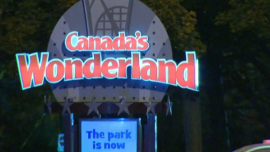Photo of Alleged assault at Canada's Wonderland not 'hate-motivated,' no charges to be laid, police say