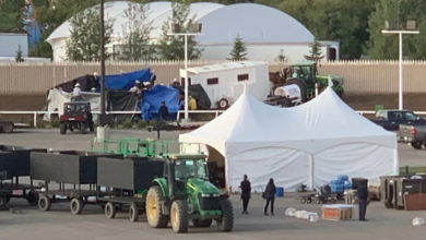 Photo of Total of 6 Calgary Stampede chuckwagon horses dead after 3 more put down Sunday