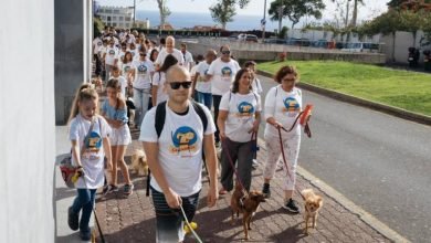 Photo of Caminhada para cães marcou início da campanha da CMF contra o abandono animal