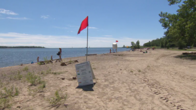 Photo of High E. coli levels force closure of 3 Toronto beaches