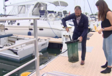 Photo of Toronto marina installs experimental floating garbage cans to keep water clean