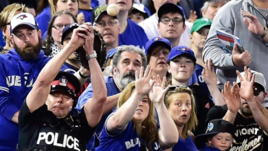 Photo of Blue Jays extending protective netting at Rogers Centre past each dugout for 2020