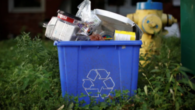 Photo of Ontario to make product producers responsible for Blue Box program