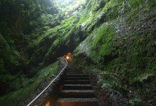 Photo of Algar do Carvão entre as grutas mais bonitas do mundo