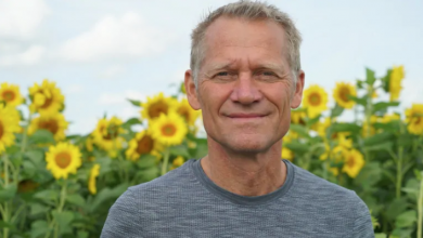 Photo of Henk Schuurmans opens farm to sunflower-seekers