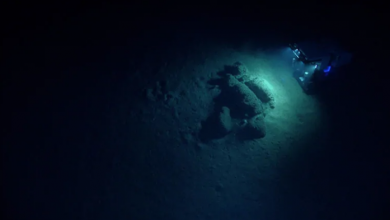 Photo of Canadian, American scientists team up to explore deep ocean floor off Nova Scotia