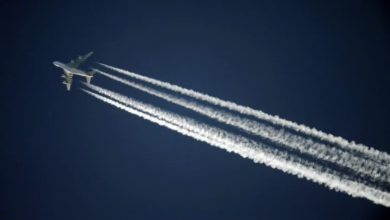Photo of 5 ways to make air travel greener