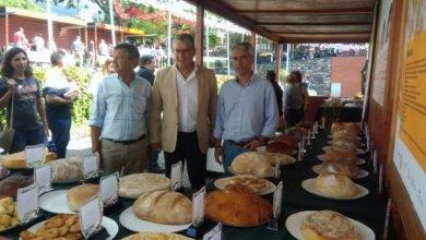Photo of Governo prepara registo de todos os pães tradicionais da Madeira