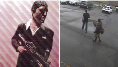 Photo of Peel police officers plead guilty after stealing Scarface statue, lying about it in court