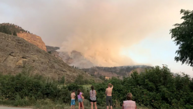 Photo of Wildfire in Okanagan Valley nearly triples in size to 6 sq. km, expected to keep growing
