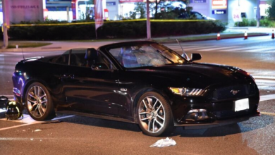 Photo of 1 dead after being struck by vehicle in North York