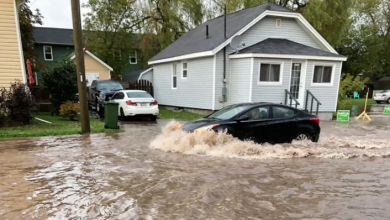 Photo of Thunderstorm floods some Charlottetown streets