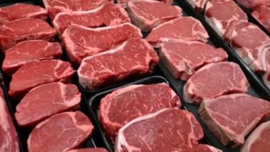 Photo of Federal food safety agency suspends licence, launches investigation into meat packing company
