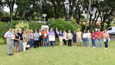 """Photo of """"Funchal, Cidade Florida"""" premiou 29 jardins e hortas"""