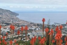 Photo of Batido recorde de precipitação no Funchal no mês de Junho