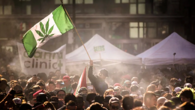 Photo of Why cannabis tourism isn't flying high in Canada