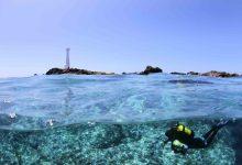 Photo of Açores nomeados como melhor destino do mundo para mergulho nos World Travel Awards 2019