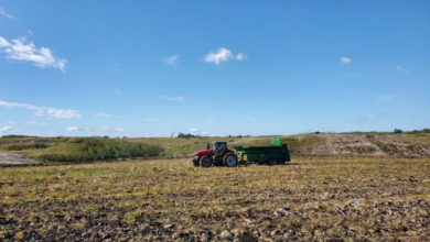 Photo of Edmonton's organic waste and a willow crop could help reclaim an Alberta coal mine