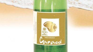 Photo of Vinho Caracol terá edição especial comemorativa dos 600 Anos