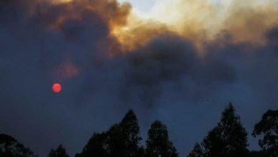 Photo of Mais de 100 concelhos de 13 distritos em risco máximo de incêndio