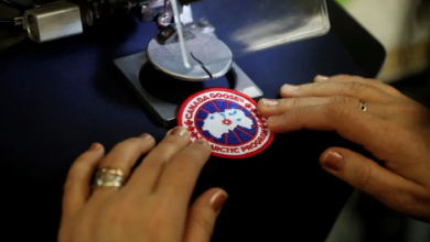 Photo of PETA takes Toronto to court over removal of anti-Canada Goose ads